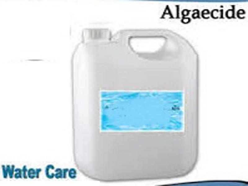 Swimming pool algaecide in dubai algaecide for swimming pools manufacturers in dubai algaecide for Swimming pool suppliers in dubai